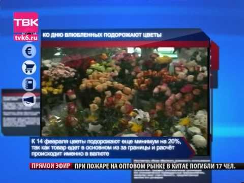 ТВК Новости Липецк видео смотреть онлайн - Gorod48 ru