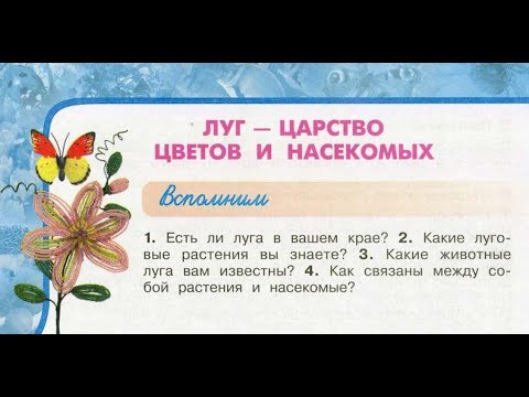 """Окружающий мир 3 класс ч.1, тема урока """"Луг - царство цветов и насекомых"""", с.104-109, Перспектива."""