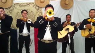 Somos Novios by Mariachi Calmecac 281-272-1546