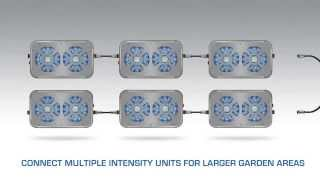 Eazy Grow Lights - Led Grow Lights - Plant Grow Lights