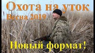 Охота на уток - Открытие сезона 2019