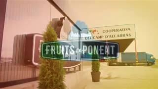 Fruits de Ponent renova les seves oficines