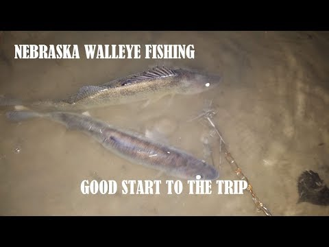 NEBRASKA WALLEYE FISHING - GOOD START TO THE TRIP!