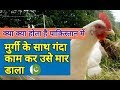Pakistan : boy arrested on charges of sexually assaulting hen | Pakistan News