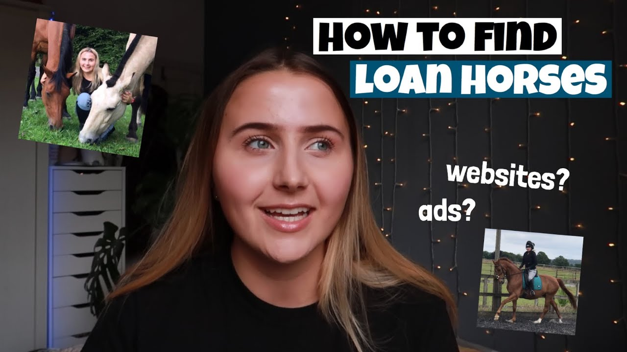 how to find a  loan horse.. Tips + Tricks | websites, ads | equinemollie