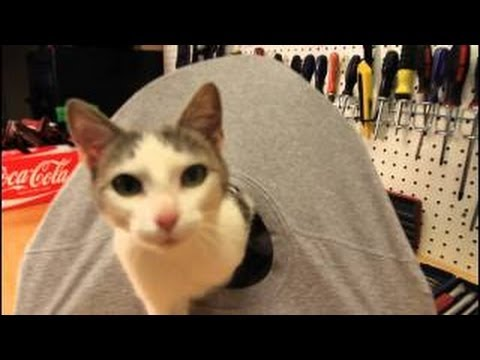 5 simple life hacks using t shirts youtube for Diy cat teepee