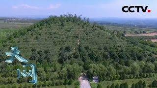 《天网》 20190501 守护国宝·案起云陵| CCTV社会与法