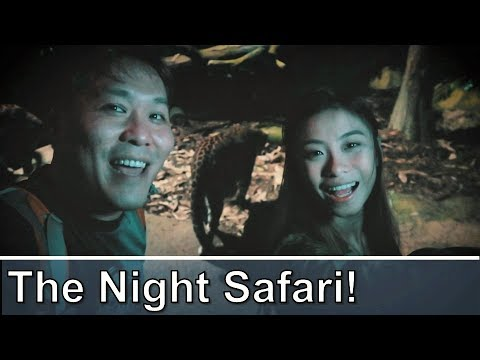 The Singapore Night Safari - Tour And Review