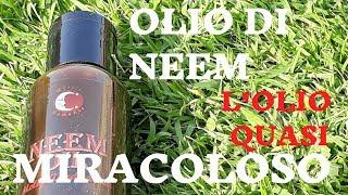 Download lagu Olio di NEEM l'olio