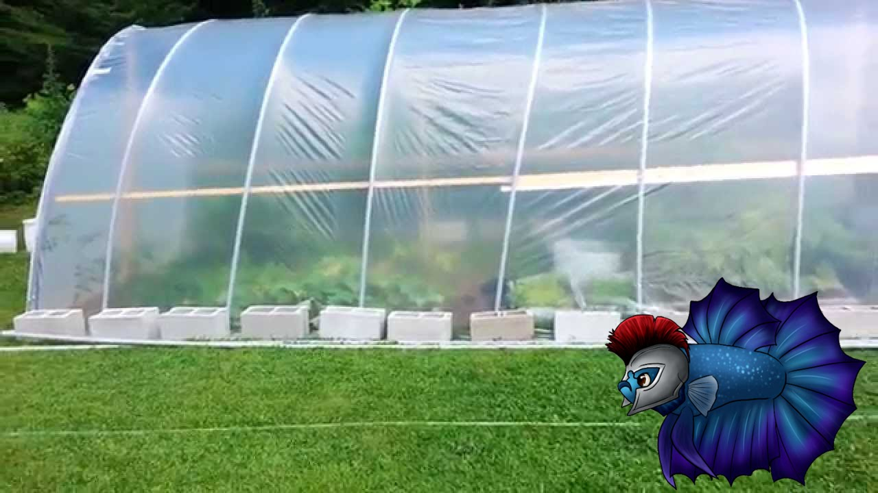 How You Can Build Your Own Diy Hoop House By Yourself
