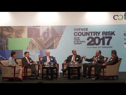 2017 Coface Country Risk Conference - Panel Discussion Two
