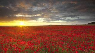 Romantic Piano and Flute Persian-Eternal Sunset-Emad Ram -Bastansiar-Mosbeb (Forughe Javdan)