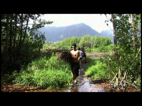 PBS Hawaii - HIKI NŌ Episode 502 | Hosted by Kealakehe High School | Full Program