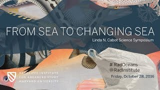 From Sea to Changing Sea | The Future of Oceans || Radcliffe Institute thumbnail