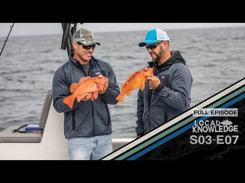 Fishing Inshore San Diego, Catch And Cook S03 E07 West Bound And Down