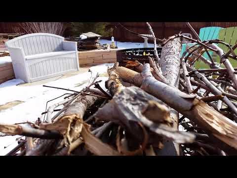 Outside cat-documentary