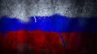 Кот слушает гимн России стоя на задних лапах