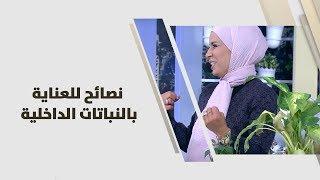 م. أمل القيمري - نصائح للعناية بالنباتات الداخلية
