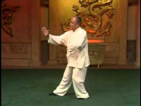 Yang Style Taijiquan 103 form - Part 1