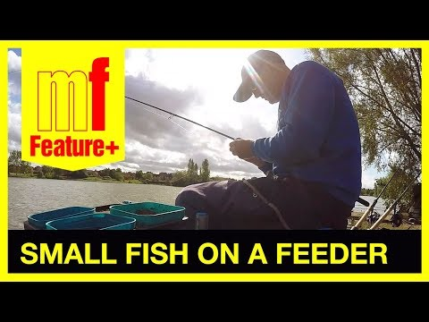 Small fish on a feeder – Darren Cox at Furzton Lake