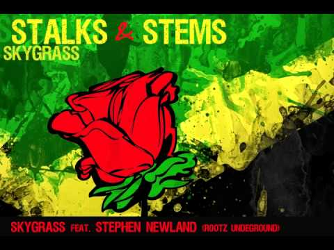Skygrass - Stalks and Stems feat. Stephen Newland (Rootz Underground)