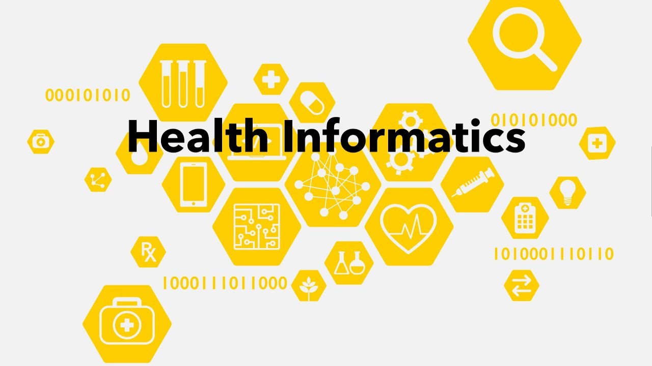 Preview image for An Introduction to Health Informatics video