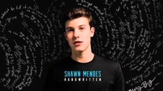 Imagination - Shawn Mendes (sped up)