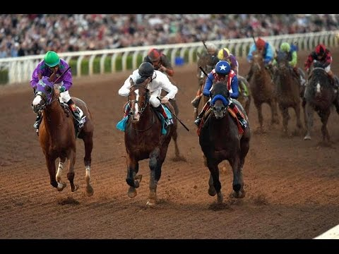 2014 Breeders' Cup Classic + Post Race
