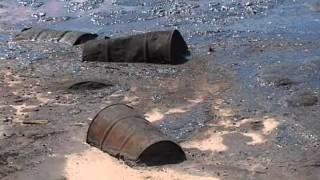 Вот такая экология(«Белое море», «Черная дыра», Игумновский полигон и многочисленные свалки - это самые громкие, хотя еще далек..., 2011-05-23T06:06:53.000Z)