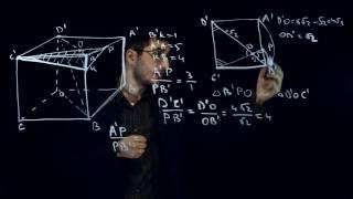 Задание 14 (Стереометрия). ЕГЭ по математике [Пример 1]