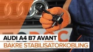 Hvordan bytte Dynamo AUDI A4 Avant (8ED, B7) - online gratis video