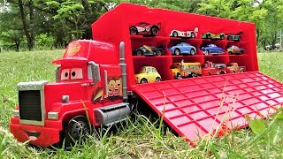 Find 12 Disney Cars in the forest!