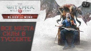 Ведьмак 3 Кровь и Вино 40 - Все Места Силы в Туссенте ► Максимальная графика!