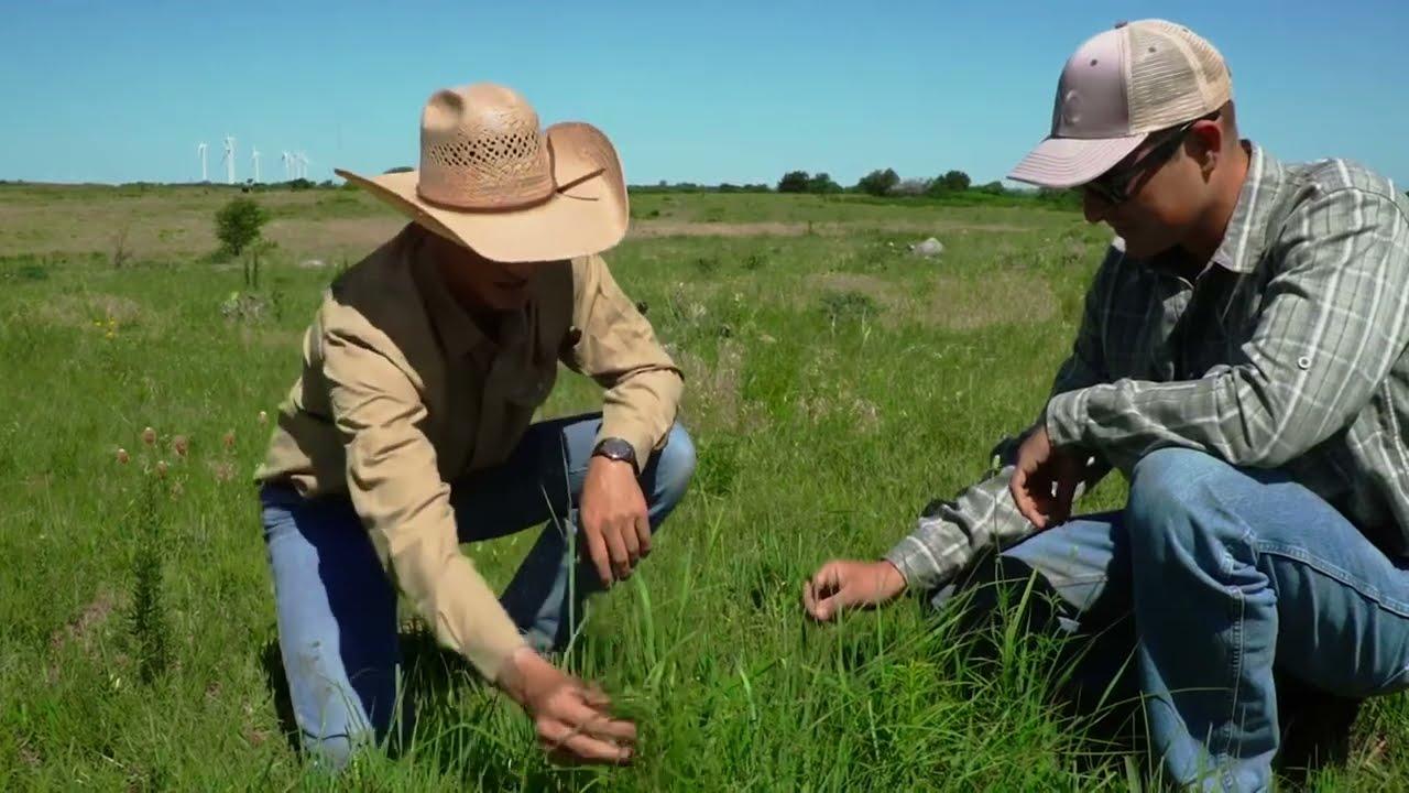Protecting the LandbyRethinking the Ranch