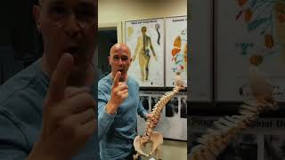 Forward Head Posture Can Be Causing Your Pains | Dr. Mandell   #shorts