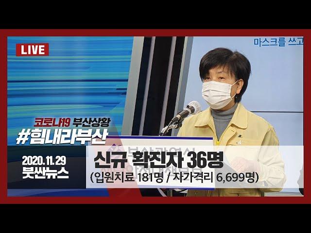 [20.11.29] 부산시 코로나19 상황보고 관련 이미지 입니다.
