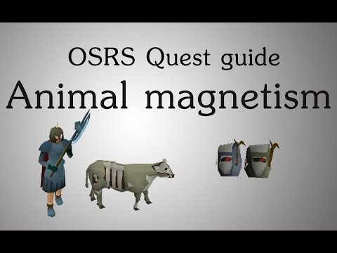 [OSRS] Animal magnetism quest guide