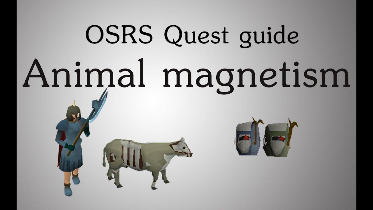 Animal Magnetism - YouTube