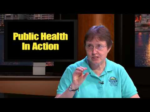 Public Health In Action: Community Health Assessment 2013