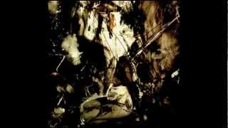 FIELDS OF THE NEPHILIM - At The Gates Of Silent Memory (Paradise Regained)