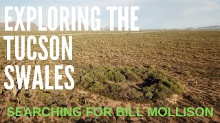 Searching for Bill Mollison: Exploring the Tucson swales