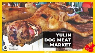 Want to Eat Dog Meat? - Selling Dog Meat at Yulin City in China!!