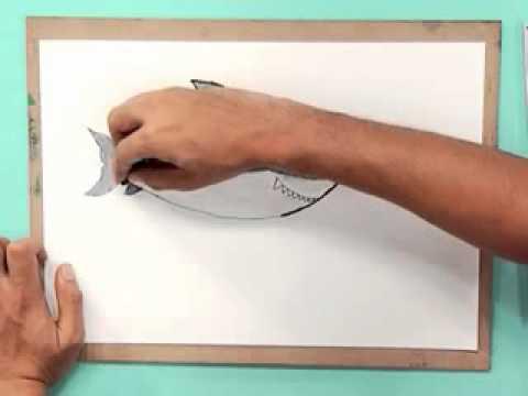 สอนศิลป์ตอนที่65 ถุงดินสอปลาฉลาม