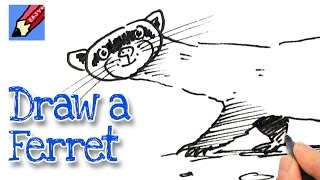 How to draw a Ferret Real Easy