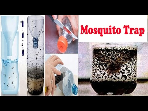 मच्छरों का काल है ये Mosquito Trap | Easy & Effective Mosquito Trap | Works 100%