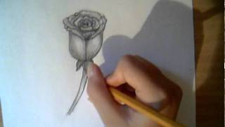 Drawing Rose - 2 different ways