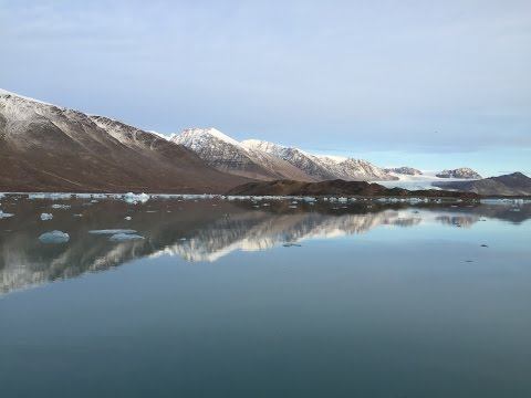 Into the Arctic: Climate change and cod in Svalbard
