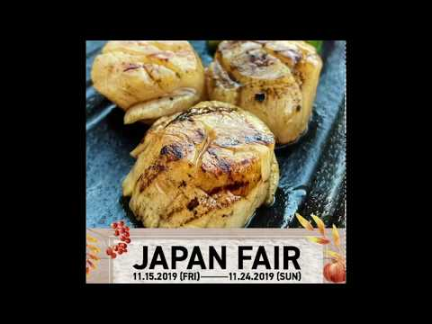 Japan Fair 11 2019