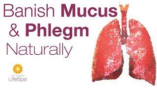 Banish Mucus & Phlegm Naturally with Ayurvedic Herbs | John Douillard's LifeSpa