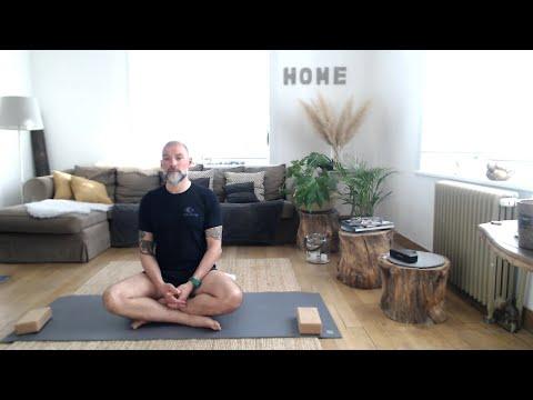 Cours Hatha Yoga. Sandro Zatta